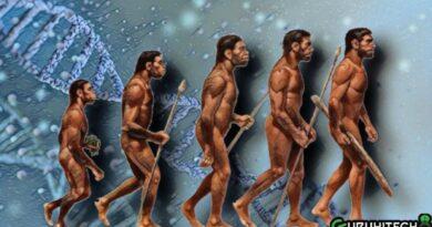 gene-homo-sapiens