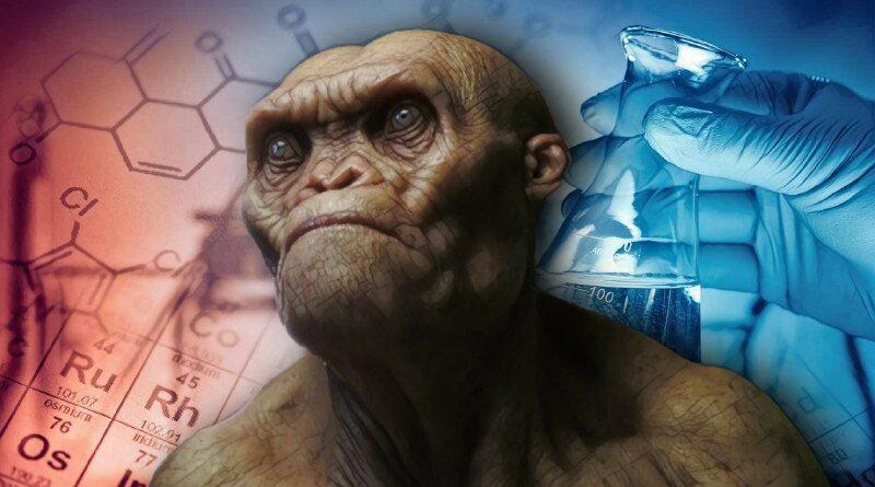 ibrido-uomo-scimmia