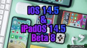 ios-e-ipados-14.5-beta-8