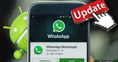novita-whatsapp-android