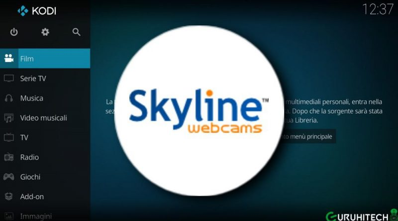 skyline webcams fanart