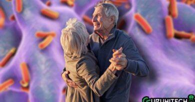 batteri-e-invecchiamento