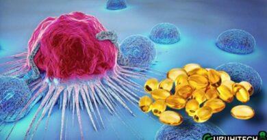 omega-3-contro-il-cancro